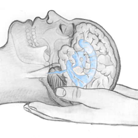 Craniosacral-ventricles