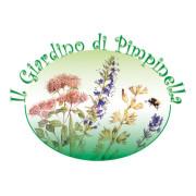 PIMPINELLA