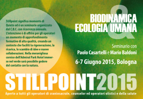 STILLPOINT 2015